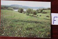 Postkarte Ansichten Brandenburg An der Talsperre Pöhl