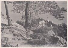 D3586 France - Mentone - Il Vecchio Cimitero - Stampa d'epoca - 1940 old print