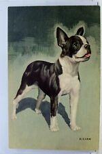 Animal Dog Puppy D Carr Postcard Old Vintage Card View Standard Souvenir Postal