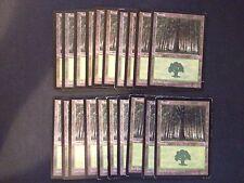 20 Basic Land - SAME ART - Forest - Portal - MP-NM - Magic MTG FTG