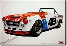 """REDUCED Ford Mustang Racers 24/""""x18/"""" signed by Peter Brock"""