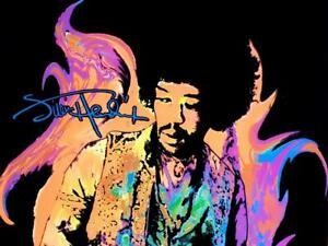 Jimi Hendrix Vtg Flame Black Light Velvet Scorpio 1996 Poster #1737 Winterland