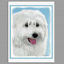 6 Polish Lowland Sheepdog Dog Blank Art Note Greeting Cards Card Paper