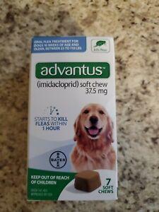 Advantus Flea Soft Chews 37.5 mg Large Dogs 23-110 Pounds 7 Chews Exp DEC 2023