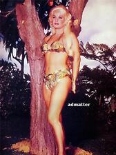Old Pin-up poster print Mamie Van Doren Garden of Eden!