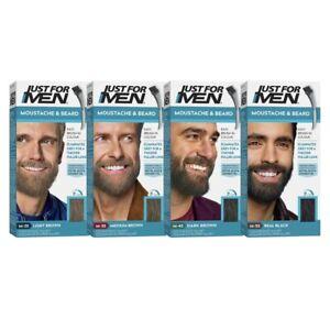 Just for Men Moustache & Beard Brush-In Colour Kit Eliminate Grey Hair 5 Minutes