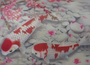 Poster Print 3d picture of two red and white koi fish, great for Home Decor K111