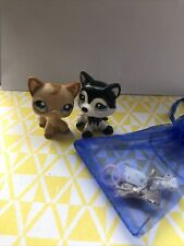 Littlest Pet Shop Black And White Husky And Brown Short Hair Cat With Free Gift