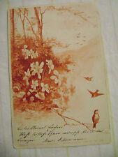 old postcard- ARTIST SIGNED NURNBERG THEODORE STROEFER, LOVELY BIRDS, 1899