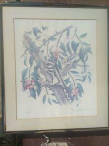Hand signed / limited numbers prints Australia flora/fauna (Peter Longhurst) x 4