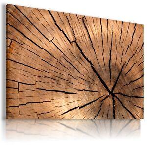 PATTERN WOODEN CIRCLE Abstract Modern Canvas Wall Art Picture BA74 MATAGA