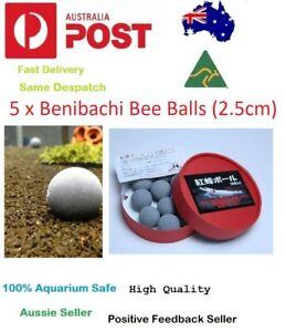 5 x Benibachi Bee Balls 2.5cm Enhancement Supplement Mineral Crystal Red Shrimp