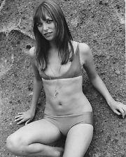 """Jane Birkin 10"""" x 8"""" Photograph no 2"""