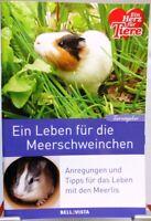 Ratgeber Tiere + Buch + Ein Leben für die Meerschweinchen + Haustier Wissen +