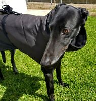 Greyhound, Whippet and Italian Greyhound Oilskin Coats. All sizes Made to Order