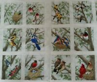 12 Blocks Panel Beautiful Bird, Quilt Squares, Chickadee, Bluejay, Cardinal
