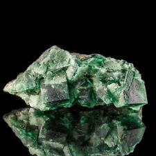 "4.4"" BlueGreen Gemmy ROGERLY FLUORITE Crystals PenetratingTwins England for sale"