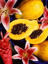Foto De Alimentos Frutas Semilla Flor Papaya Oficina Cartel Art Print BB258A