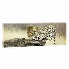 Deko-Bilder aus Leinwand mit Afrika