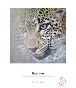 Hahnemühle Bamboo 290gsm