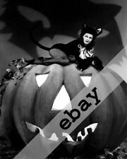 MUNSTERS TV SHOW SEXY Yvonne De Carlo as cat Halloween 8x10 PHOTO #2108