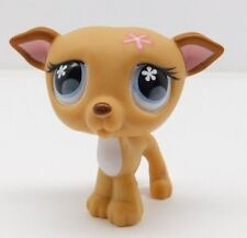 Hasbro Littlest Pet Shop Lps Tan Whippet Greyhound #498 Blue Eyes