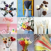 Natural Dried Flower Best Gift Plant Grass Decor Artificial Hydrangea Flower