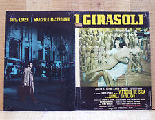 I GIRASOLI fotobusta poster Marcello Mastroianni Sophia Loren Vittorio De Sica
