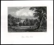 1850 Surrey-Original Antigua de impresión Peper Harow Park Milford Godalming (38)