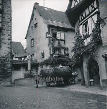 RIQUEWIHR c. 1950 - Haut-Rhin Alsace - DIV302