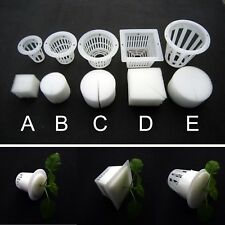 10 Clear White Mesh Pot Net Basket + Clone Cloning Collar Foam Insert Hydroponic