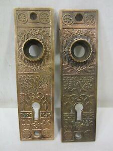 2 Antique Eastlake Style Brass Door Backplates- Floral Design