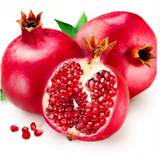 50Pcs Pomegranate Fruit-Berry Seeds Ordinary Tasty  Food No GMO Perennial