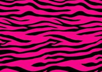 Cool Pink Zebra Pattern Poster Print Size A4 / A3 Wild Animals Poster Gift #8470