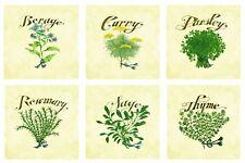 """Herbs Art Tile Set Mural Kitchen Back Splash Ceramic Custom Backsplash 6"""""""