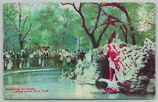 New York City New York~Central Park Watching Seals~c1910 Postcard