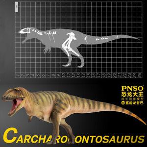 PNSO Carcharodontosaurus Gamba Model Carcharodontosauridae Dinosaur Animal Toy