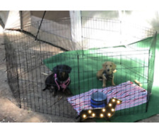 Collapsible Pens Dogs 48 InchX-largeExtraBig 42 24 36 30 in Playpen Exercise