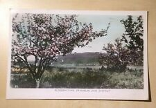 Cda. BC Blossom TIme Okanagan Lake District Gowen and Sutton POSTED 1953 Vernon