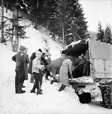 AUTRICHE c. 1960 - Chargement Bétail  Route de Igls - Négatif 6 x 6 - Aut 55