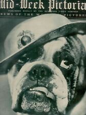 "Mid-Week Pictorial - A Warrior of the ""Devil Dogs"" Jiggs II - November 22, 1930"