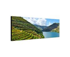 120x40cm Weinberge Panorama Portugal Douro Fluss Bild Rahmen Leinwand Sinus Art