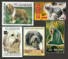 Bearded Collie * Int'l Dog Postage Stamp Art Collection *Great Gift Idea*