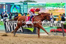 Justify Belmont Stakes and Triple Crown Winner 8 x 10