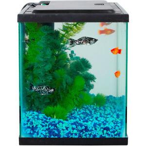 Aqua Culture 5-Gallon Aquarium Starter Kit With LED Lighting
