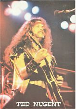 Ted Nugent-lead guitar for the Amboy Dukes