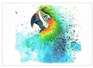 Tropical Parrot Temporary Tattoo 🇬🇧 A5 Body Art Adult Tattoos Birds 21x15 cms