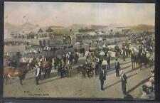 Postcard Killarney Manitoba/Canada Area Fairgrounds Bird's Eye Aerial view 1907