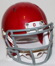 2010 Ohio State Buckeyes Alternate Custom Riddell Mini Helmet vs Michigan