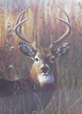 "3D Lenticular Picture Deer Head, Buck 018 15 1/2""x 11 1/2 122"